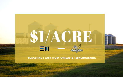 Is your farm doing cash, accrual, or no budgeting?
